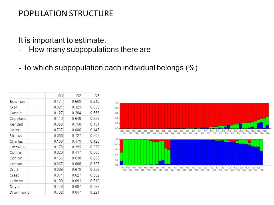 POPULATION STRUCTURE It is important to estimate: