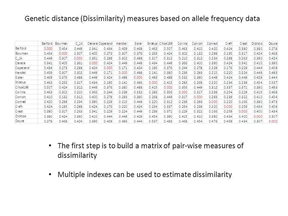 Genetic distance (Dissimilarity) measures based on allele frequency data