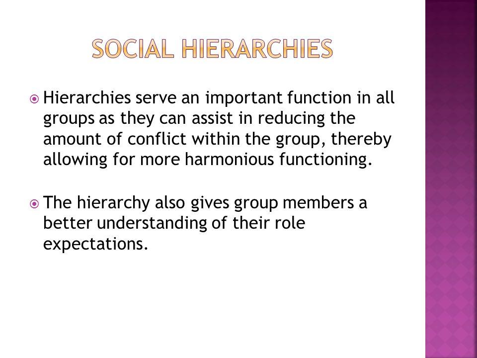 Social hierarchies
