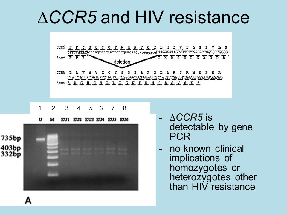 CCR5 and HIV resistance