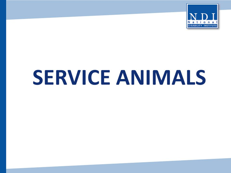 Service Animals Now we are going to briefly review service animals – their rights and responsibilities.