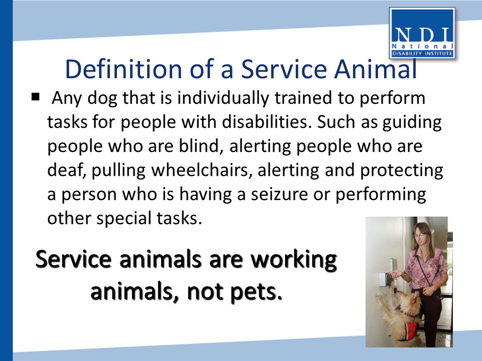Definition of a Service Animal
