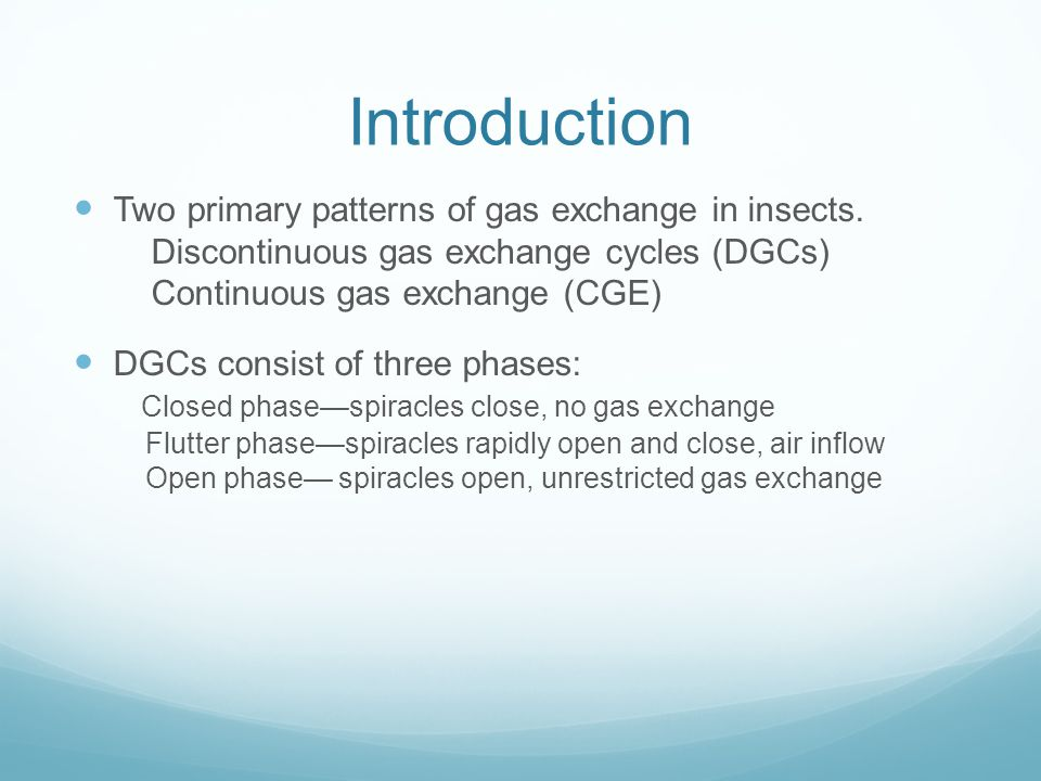 Introduction Two primary patterns of gas exchange in insects. Discontinuous gas exchange cycles (DGCs) Continuous gas exchange (CGE)