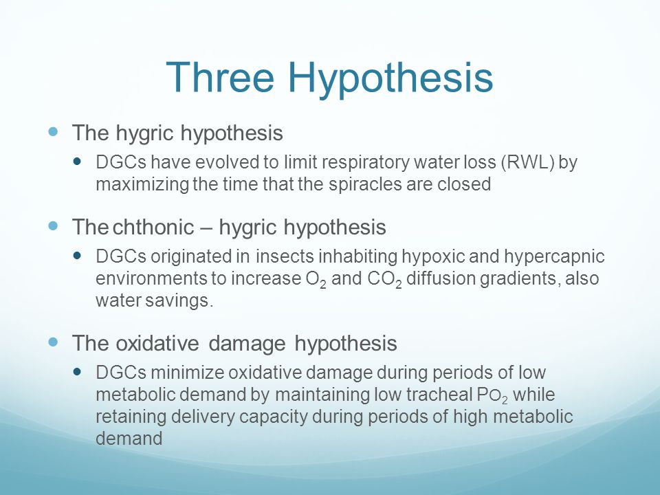 Three Hypothesis The hygric hypothesis