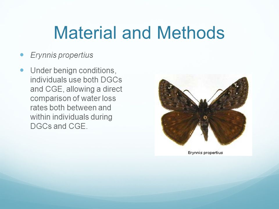 Material and Methods Erynnis propertius