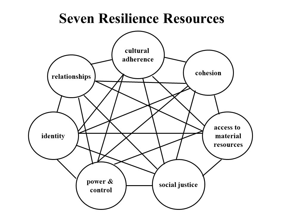 Seven Resilience Resources