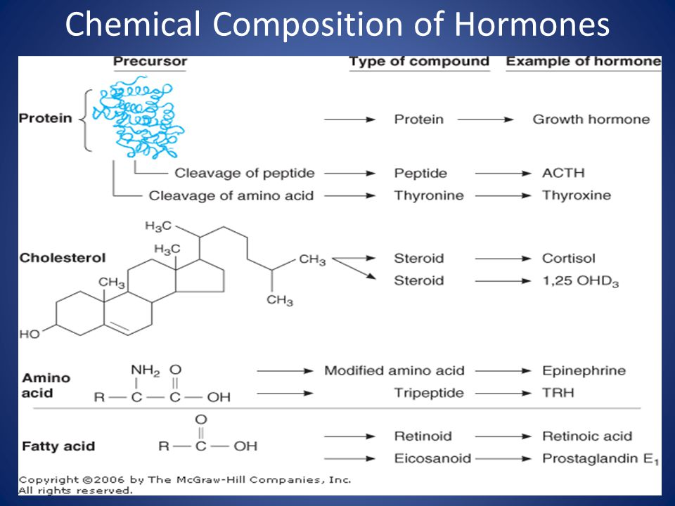 Chemical Composition of Hormones