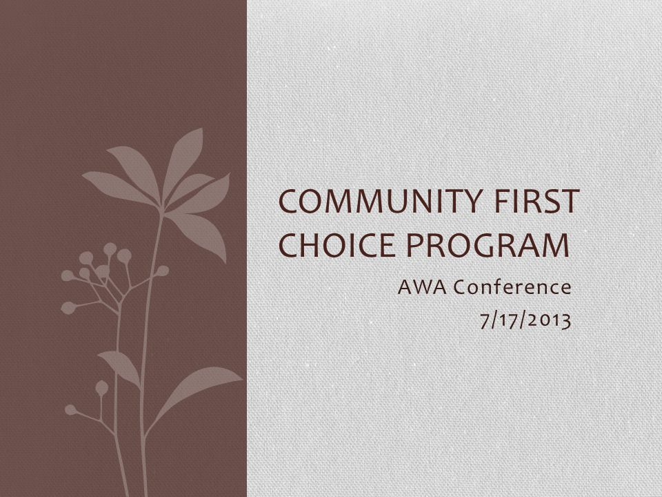 Community First Choice Program