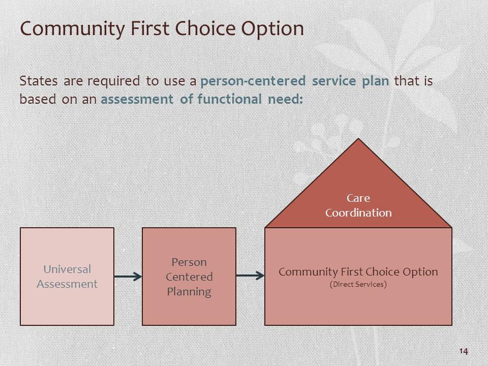 Community First Choice Option