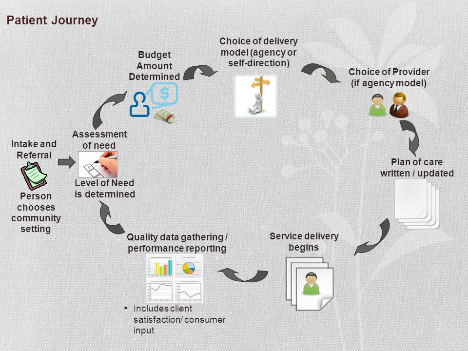 Patient Journey Choice of delivery model (agency or self-direction)