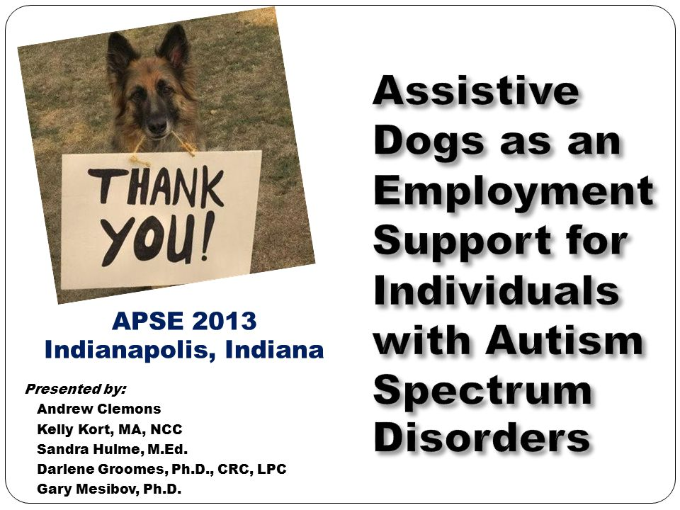 Assistive Dogs as an Employment Support for Individuals with Autism Spectrum Disorders
