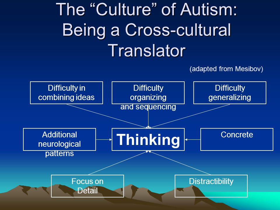 The Culture of Autism: Being a Cross-cultural Translator