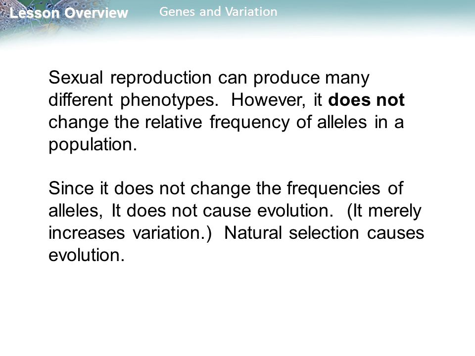 Sexual reproduction can produce many different phenotypes
