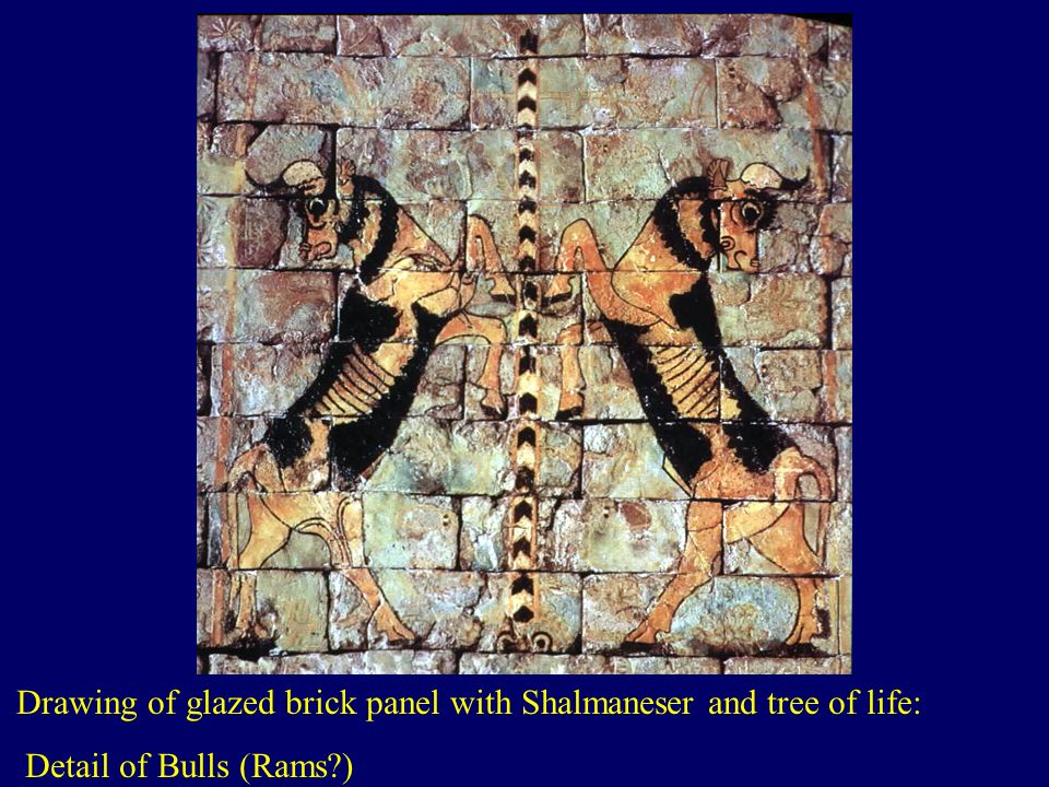 Drawing of glazed brick panel with Shalmaneser and tree of life: