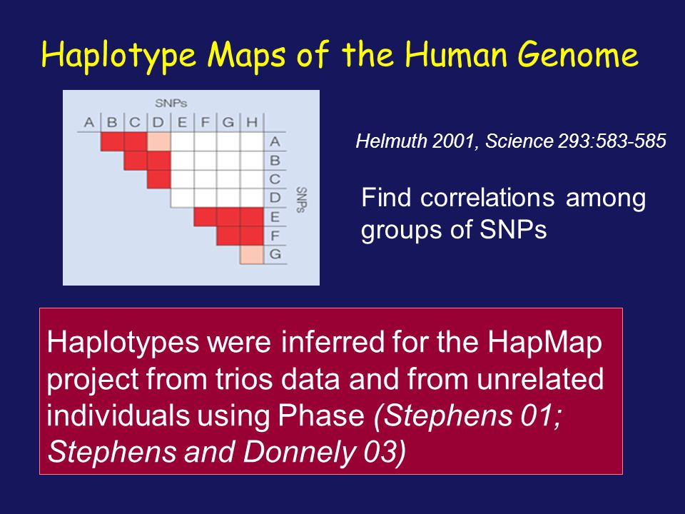 Haplotype Maps of the Human Genome