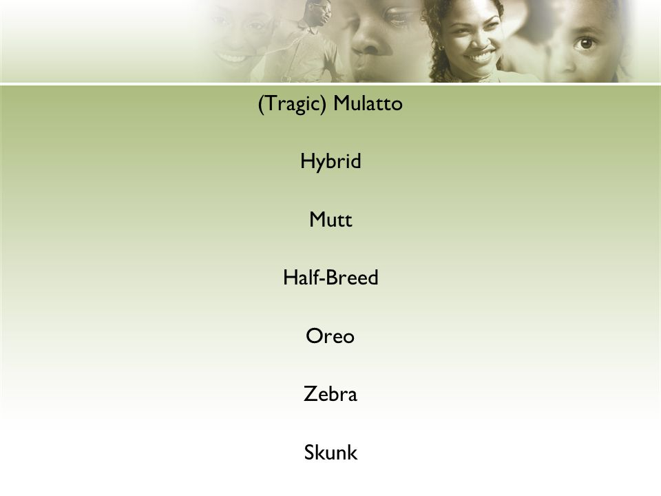 (Tragic) Mulatto Hybrid Mutt Half-Breed Oreo Zebra Skunk