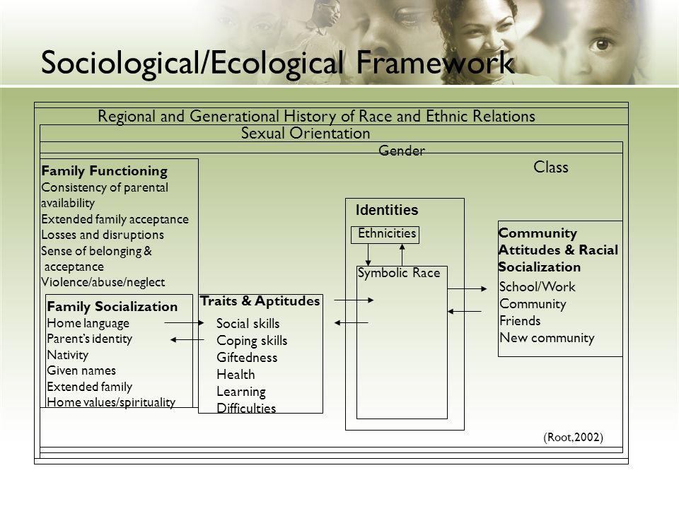 Sociological/Ecological Framework