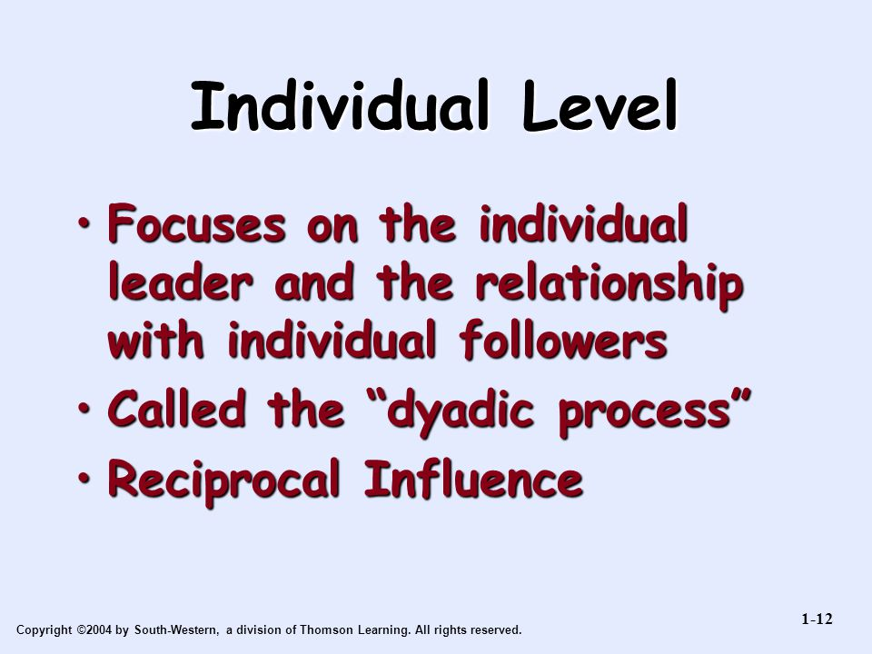 Individual Level Focuses on the individual leader and the relationship with individual followers. Called the dyadic process