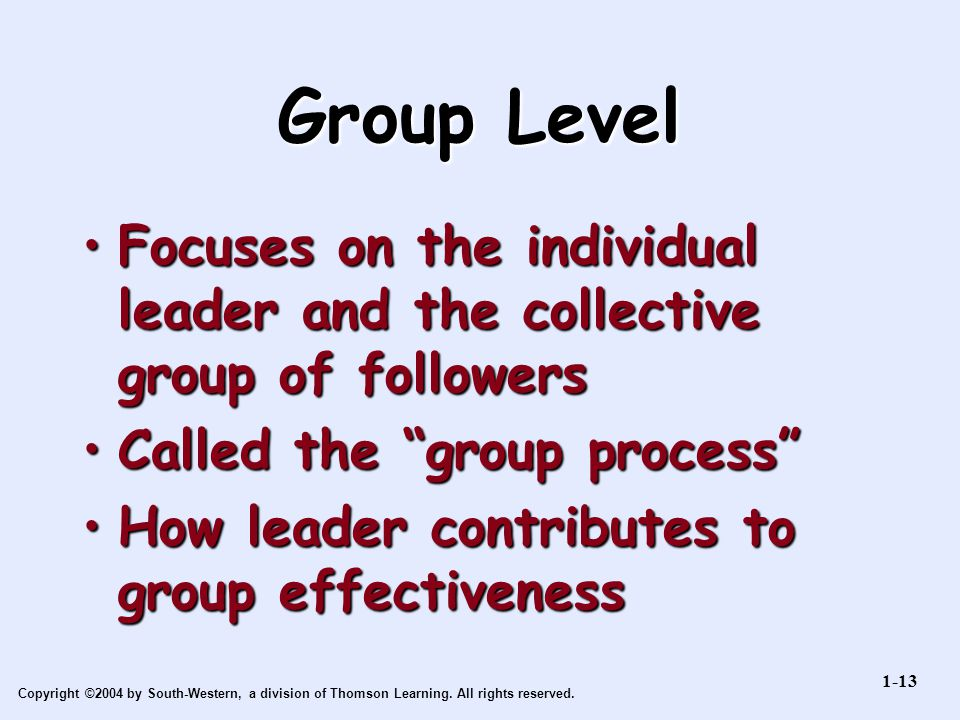 Group Level Focuses on the individual leader and the collective group of followers. Called the group process