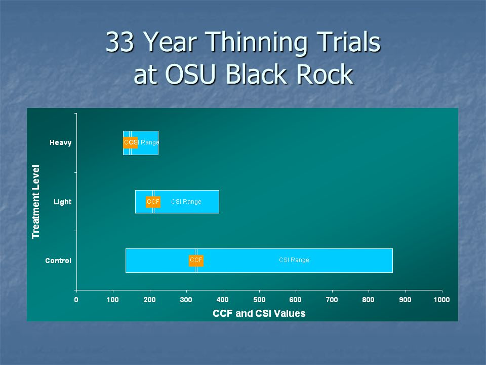33 Year Thinning Trials at OSU Black Rock