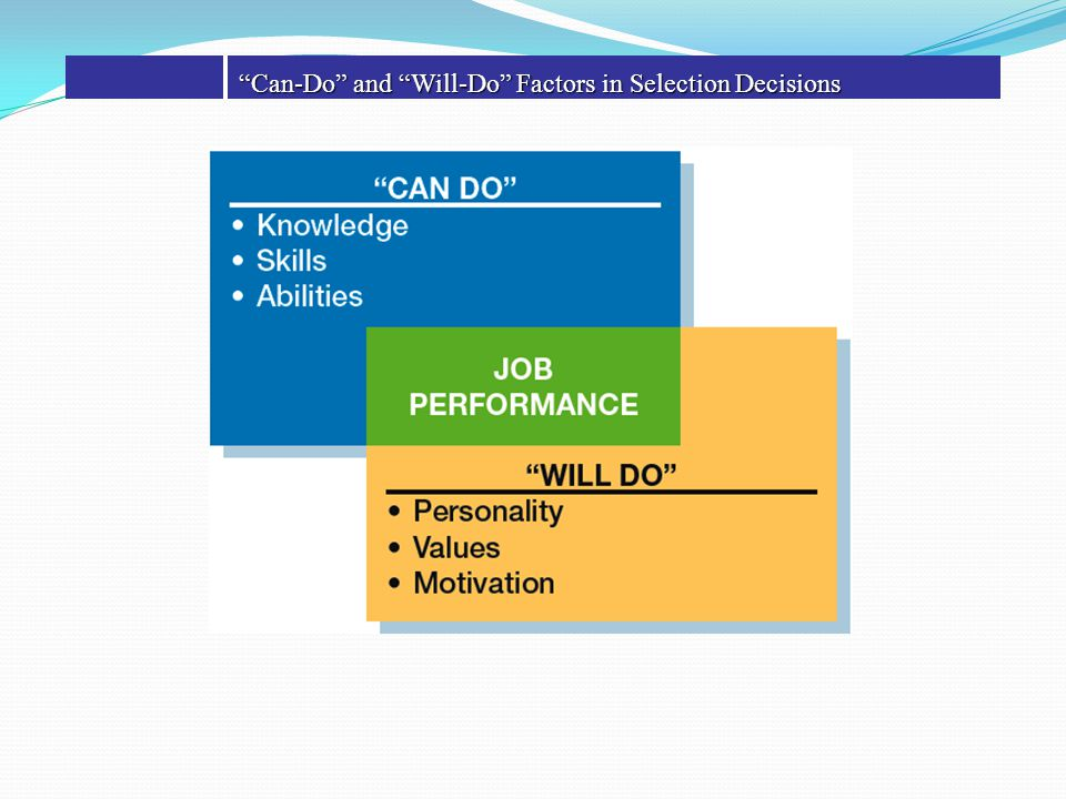 Can-Do and Will-Do Factors in Selection Decisions