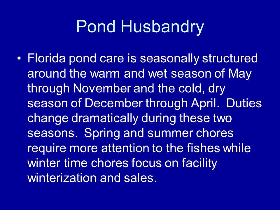 Pond Husbandry