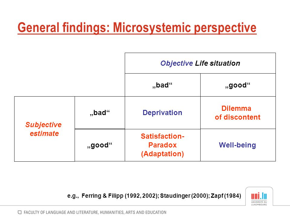 General findings: Microsystemic perspective