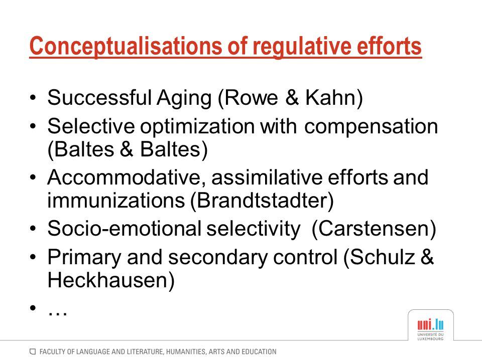 Conceptualisations of regulative efforts
