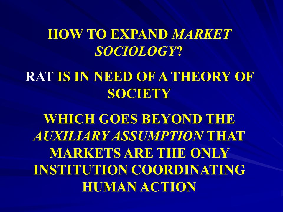 HOW TO EXPAND MARKET SOCIOLOGY RAT IS IN NEED OF A THEORY OF SOCIETY