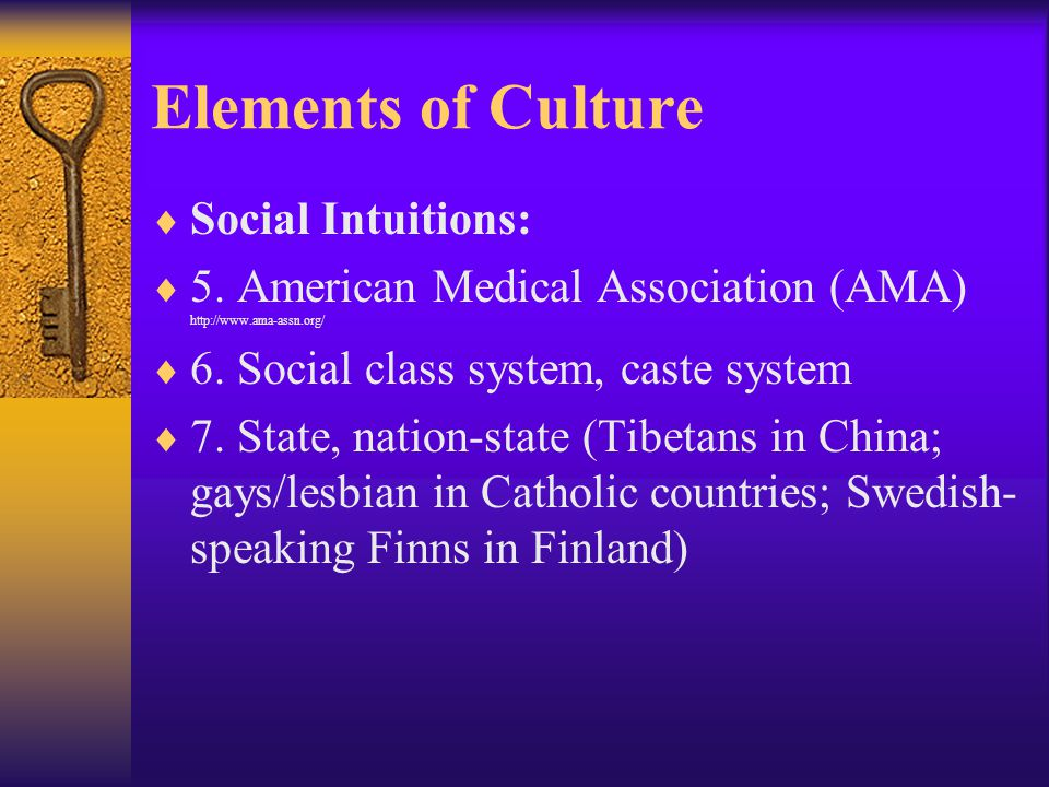 Elements of Culture Social Intuitions: