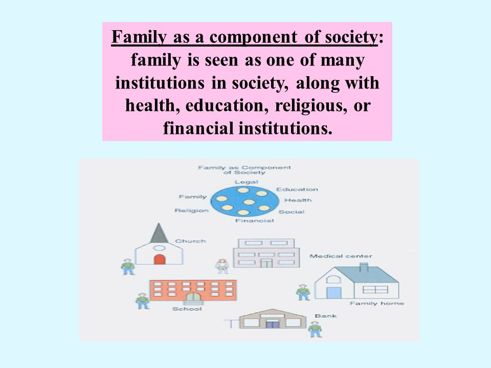 Family as a component of society: family is seen as one of many institutions in society, along with health, education, religious, or financial institutions.