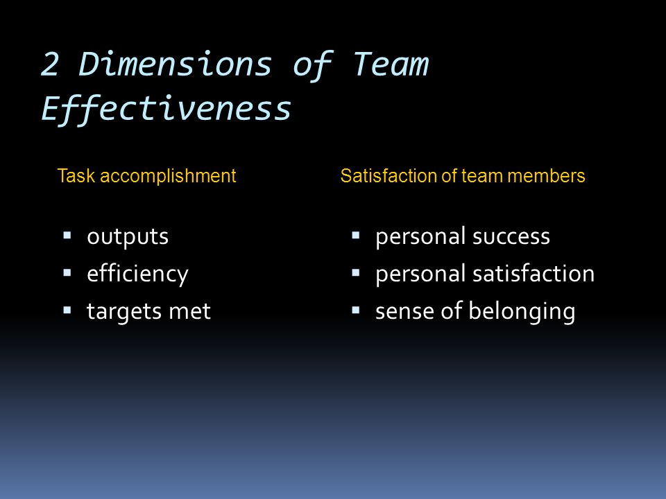 Critical Aspects of Team Management