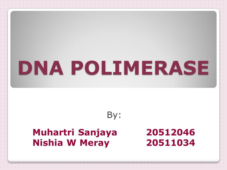 DNA POLIMERASE By: Muhartri Sanjaya 20512046 Nishia W Meray 20511034