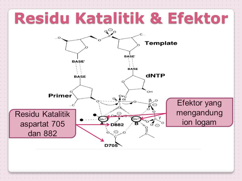 Residu Katalitik & Efektor