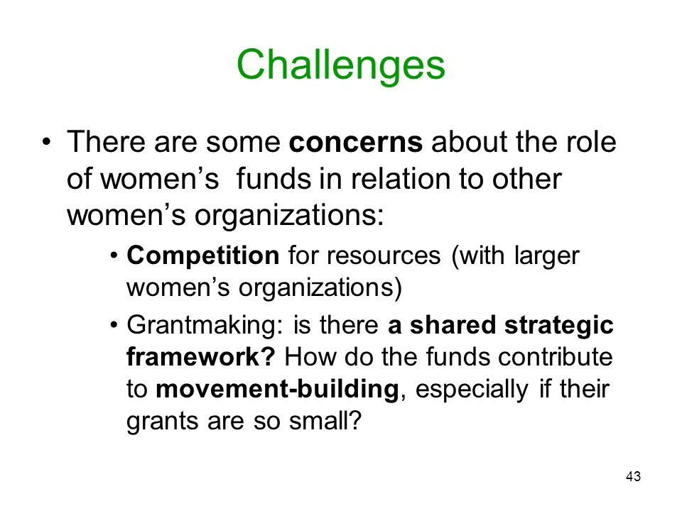 Challenges There are some concerns about the role of women's funds in relation to other women's organizations: