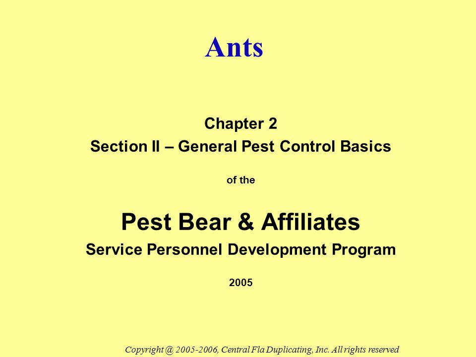 Ants Pest Bear & Affiliates Chapter 2