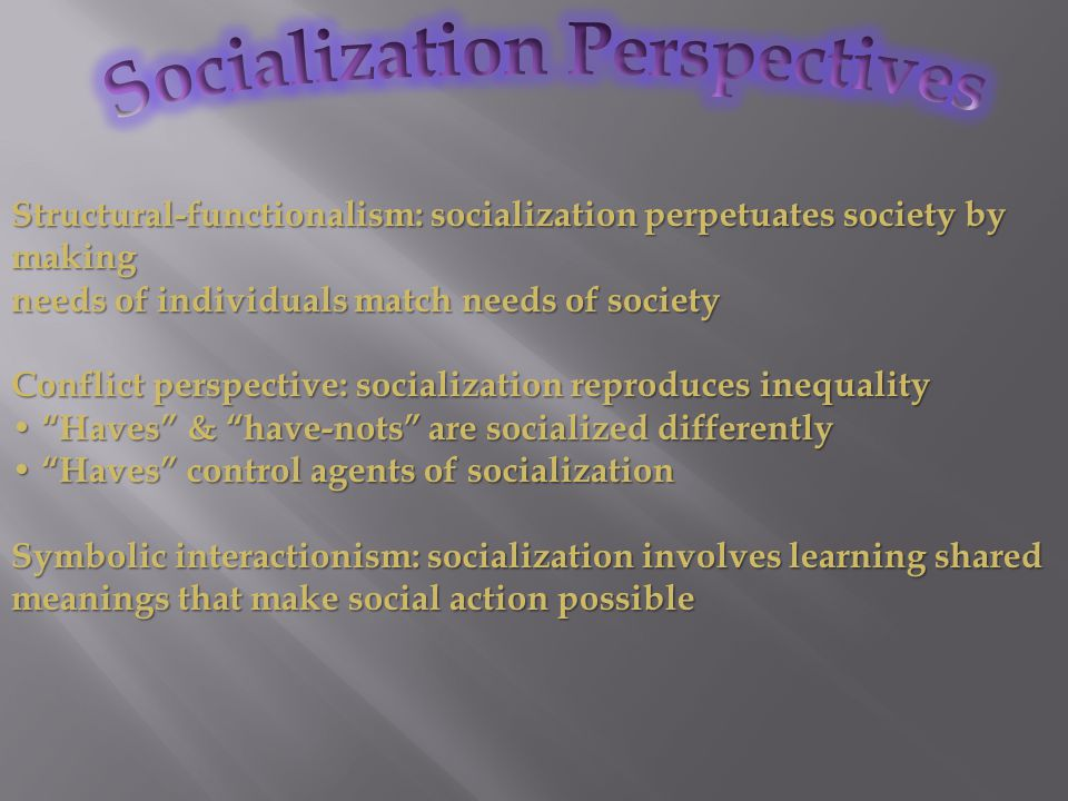 Socialization Perspectives