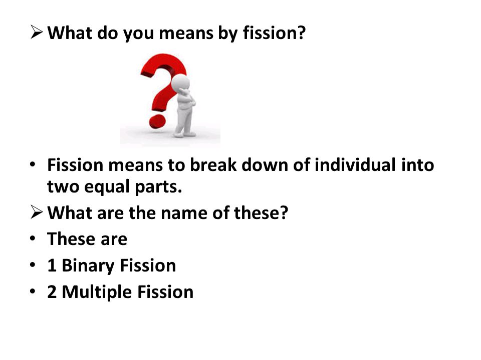 What do you means by fission