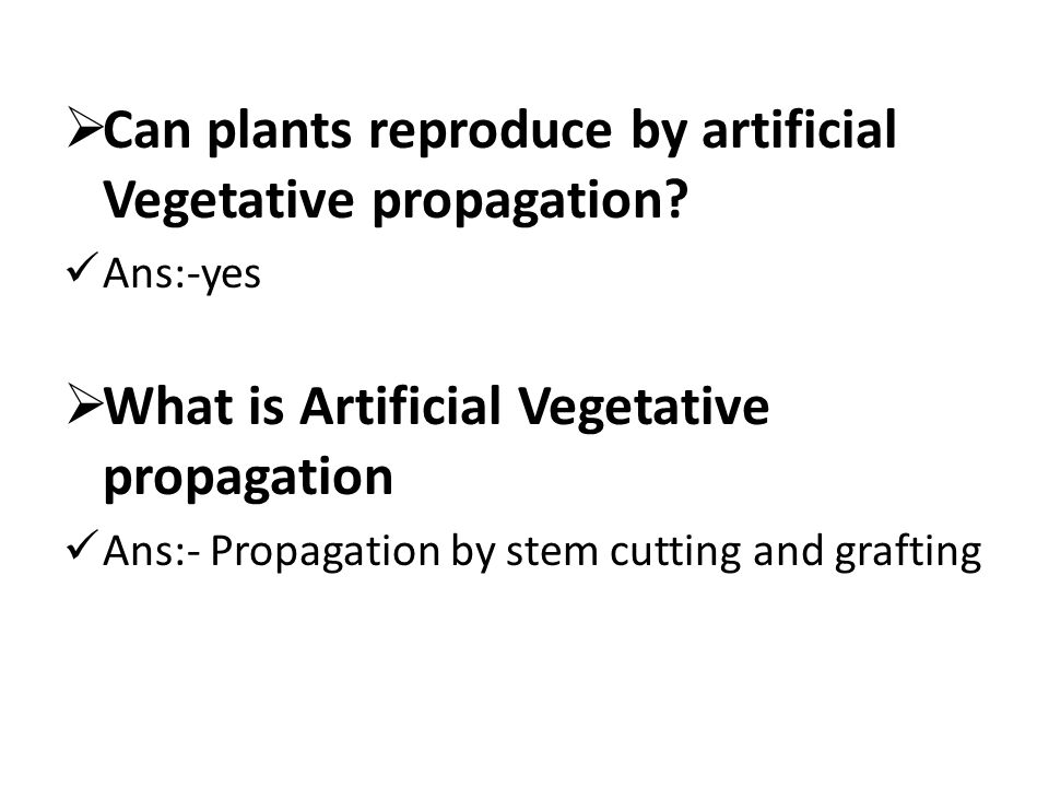Can plants reproduce by artificial Vegetative propagation