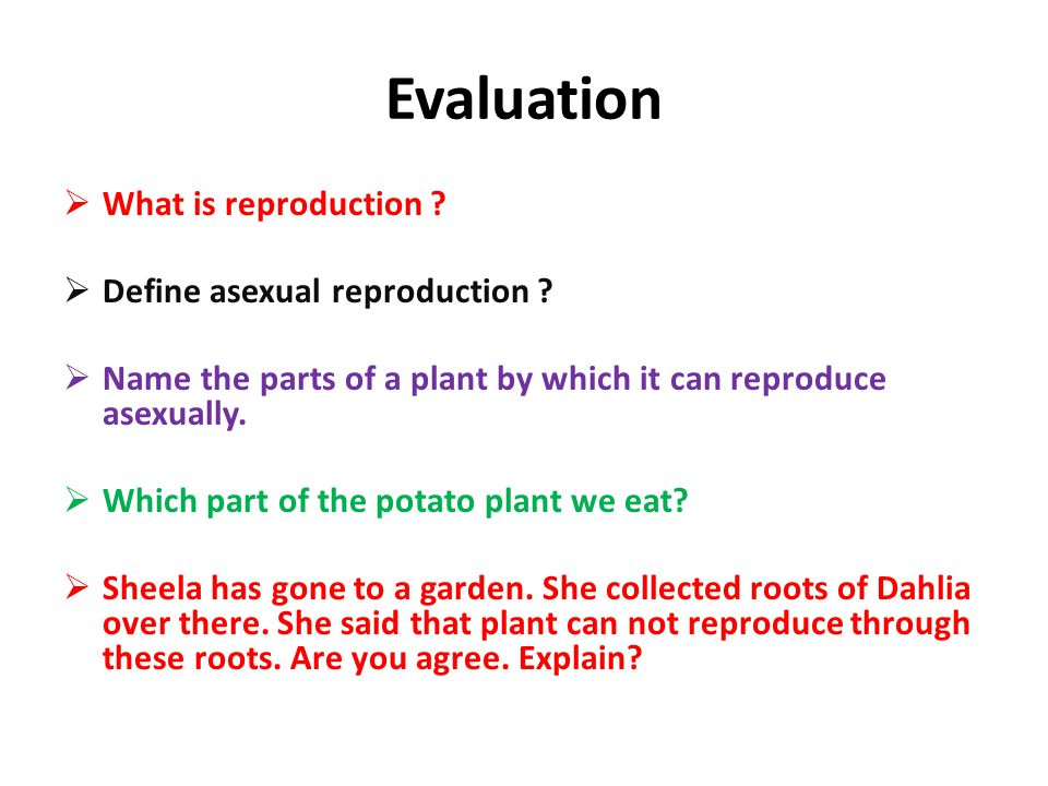 Evaluation What is reproduction Define asexual reproduction
