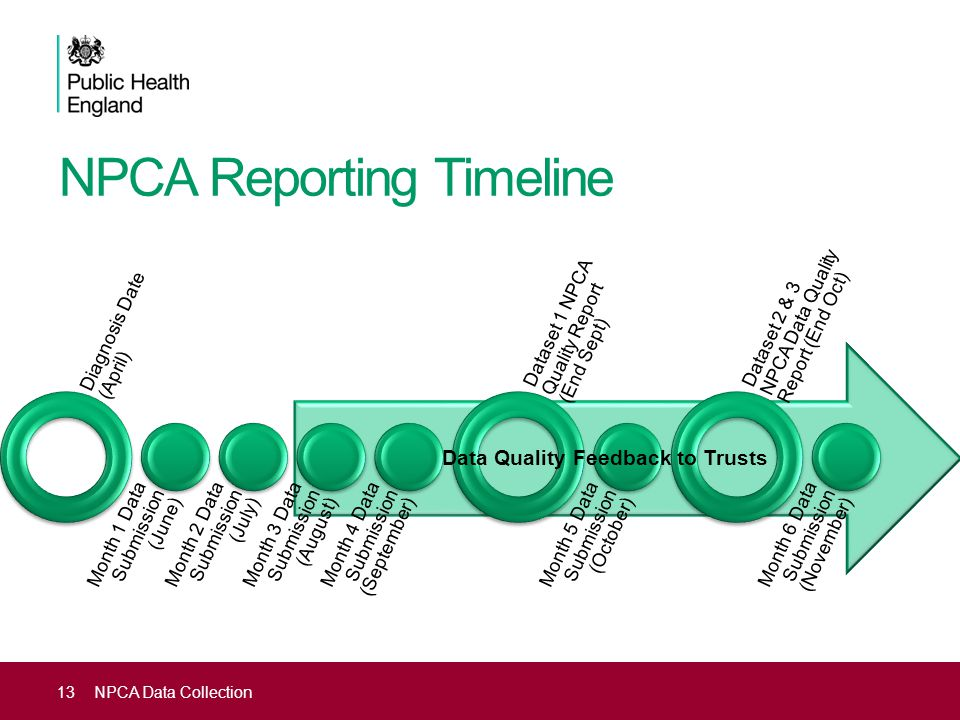 NPCA Reporting Timeline
