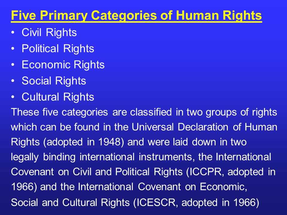 Five Primary Categories of Human Rights