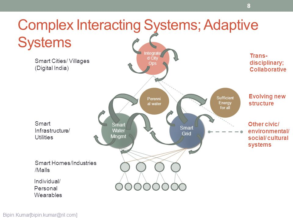 Complex Interacting Systems; Adaptive Systems