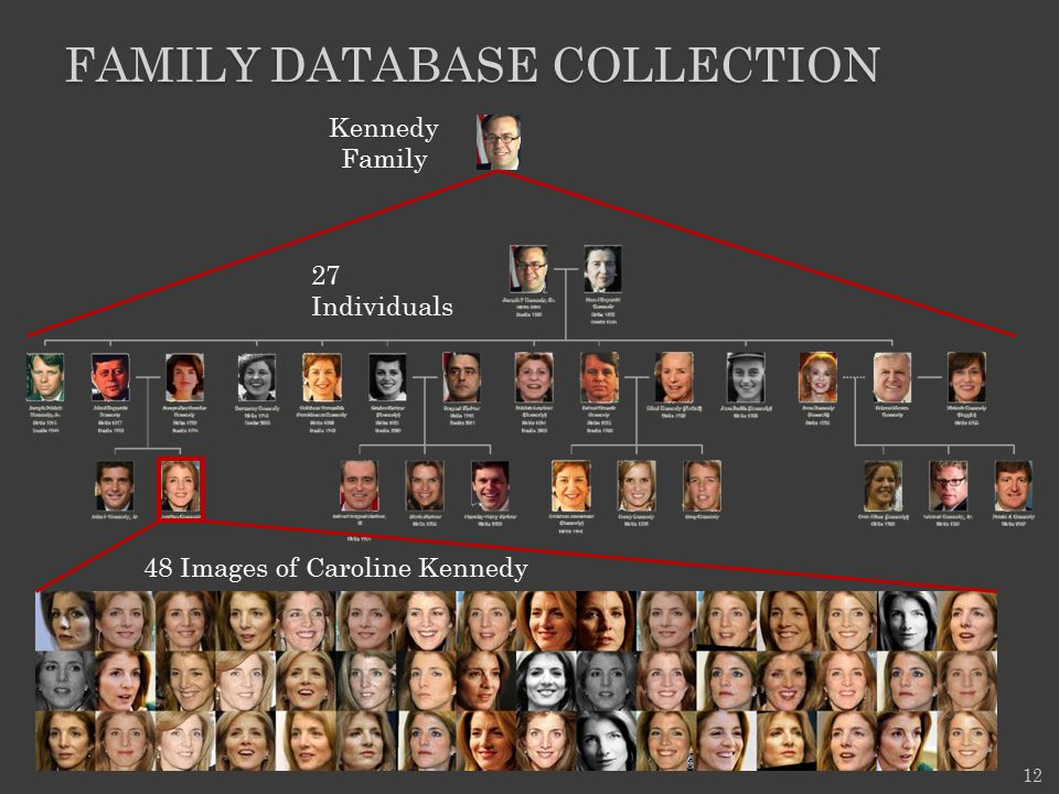 family database Collection