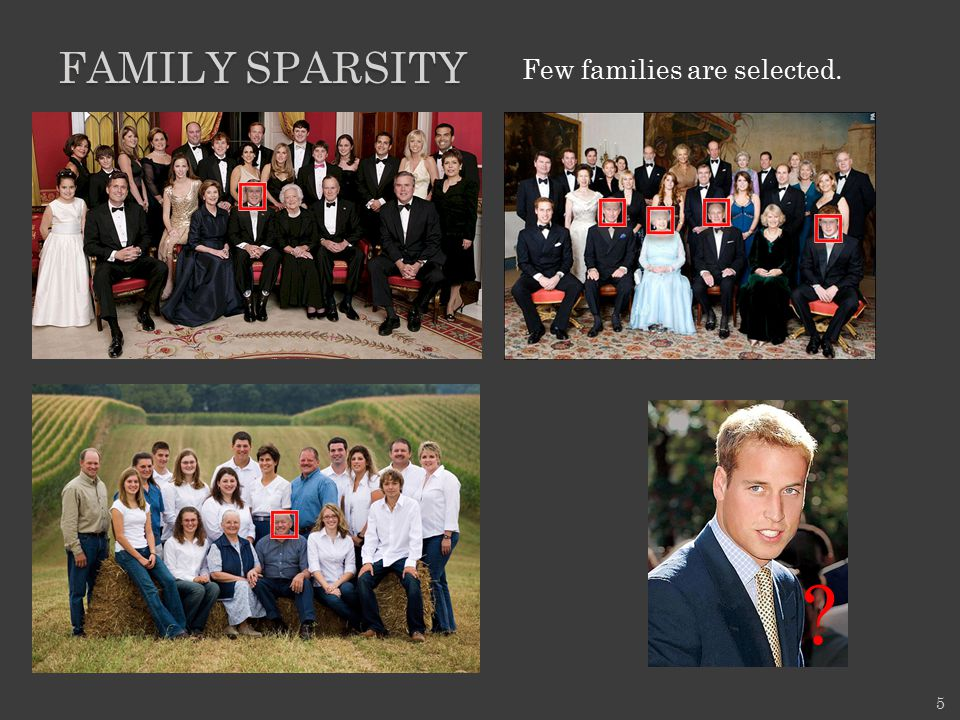 family sparsity Few families are selected.