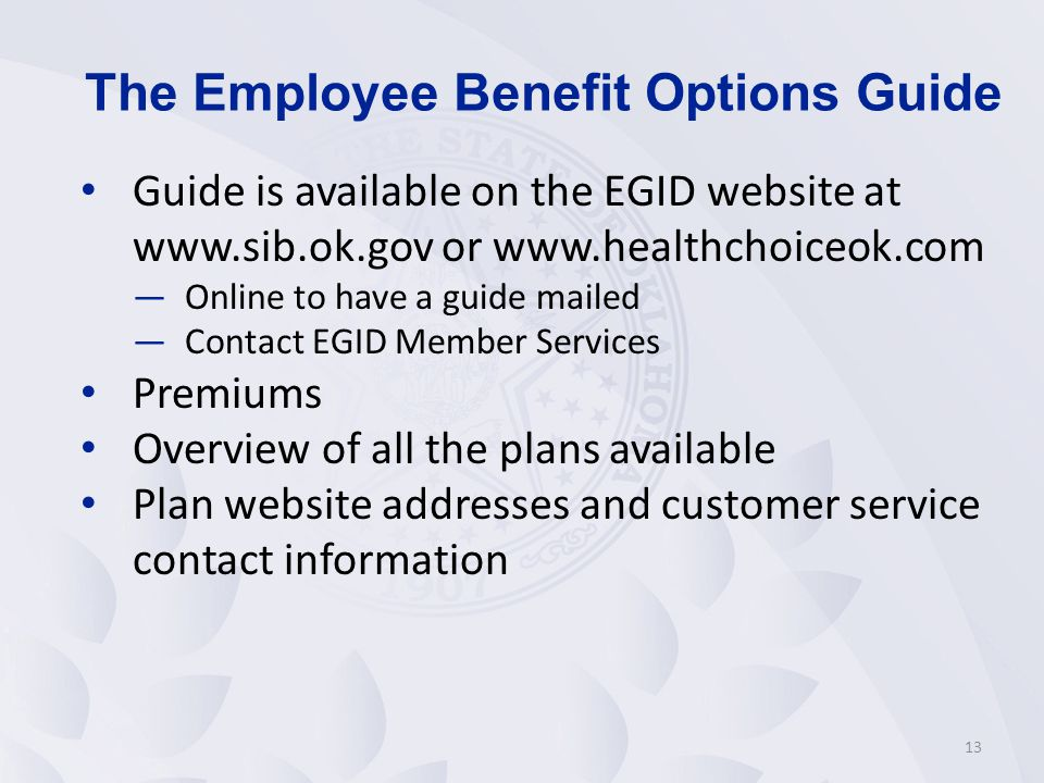 The Employee Benefit Options Guide