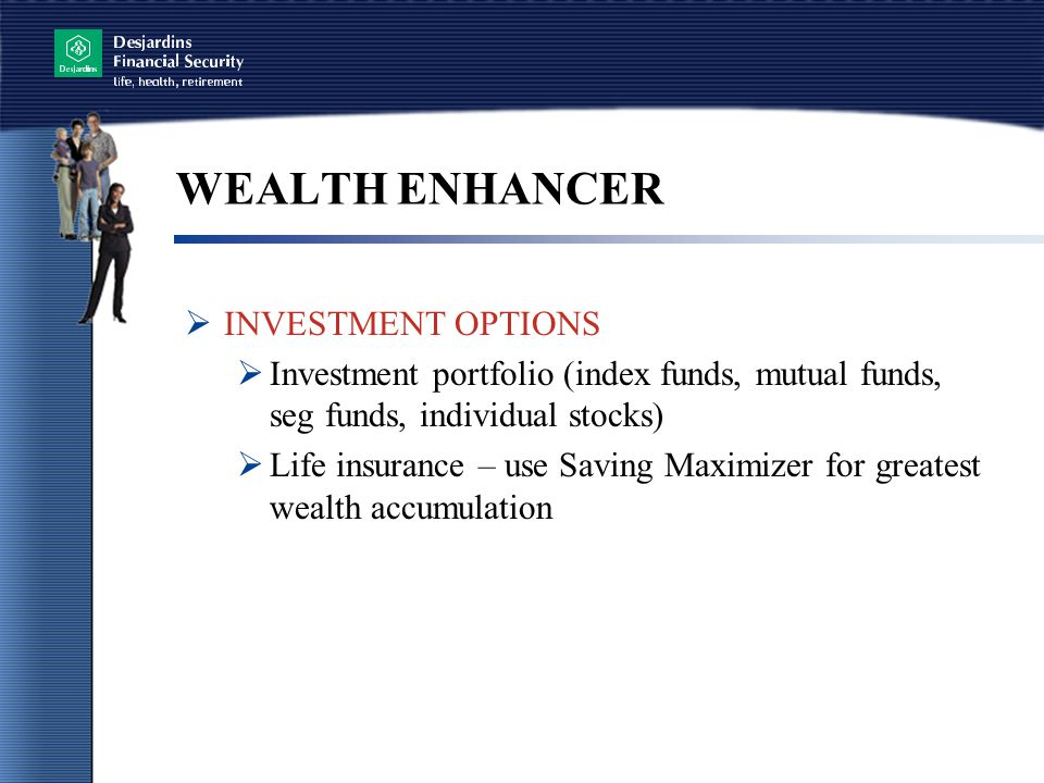 WEALTH ENHANCER INVESTMENT OPTIONS