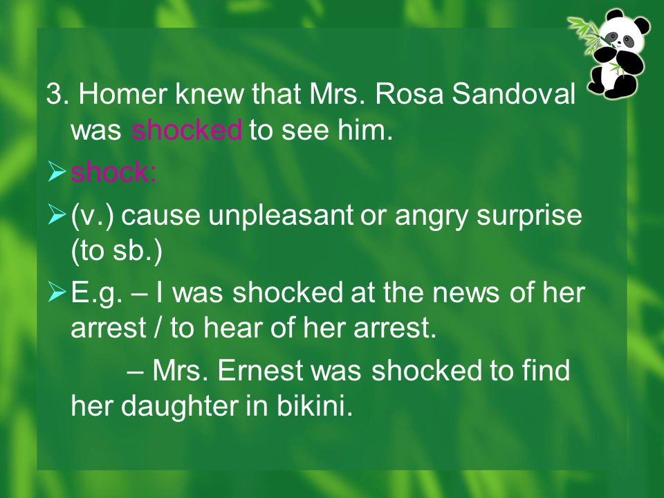 3. Homer knew that Mrs. Rosa Sandoval was shocked to see him.