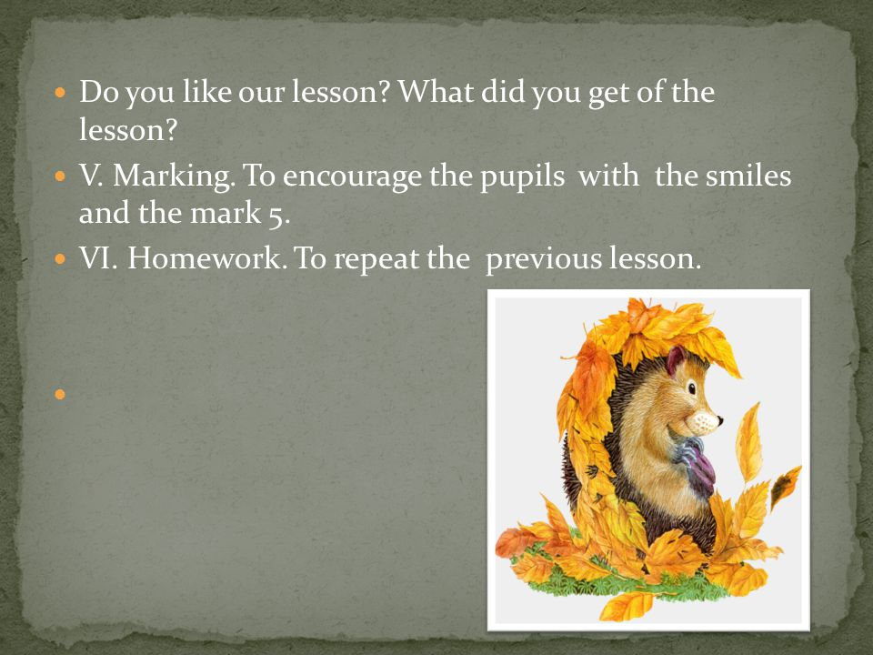 Do you like our lesson What did you get of the lesson