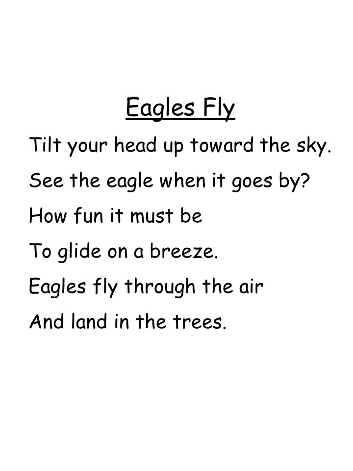 Eagles Fly Tilt your head up toward the sky.